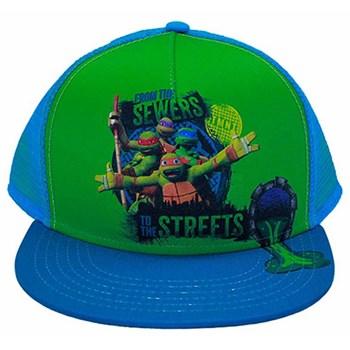 f6f86ce4459 Teenage Mutant Ninja Turtle