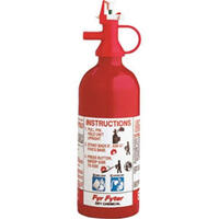 Disposable Fire Extinguisher, 2-B:C Image 1
