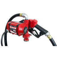 12 Volt DC Pump with Hose and Automatic Nozzle 71.3458