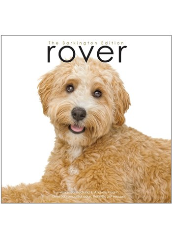 Rover - Haute Dog Edition