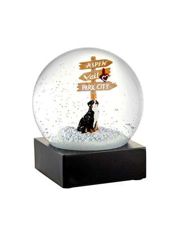 bernese mountain dog snow globe
