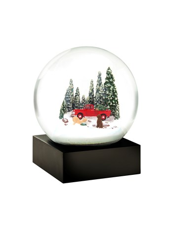 red truck and dog snow globe