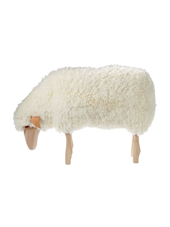 medium grazing sheep stool