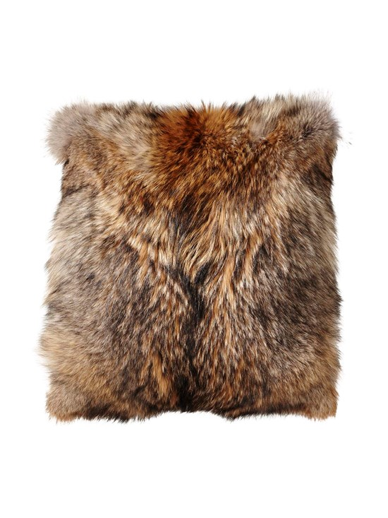 coyote millennium pillow
