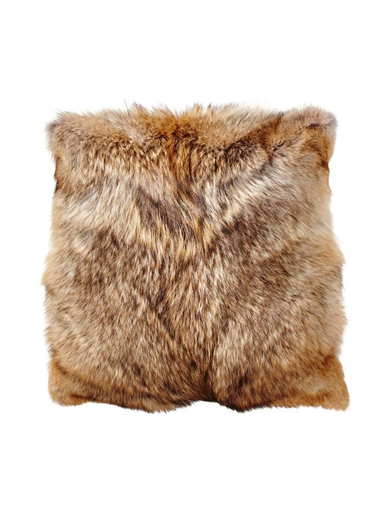 coyote 4 point pillow