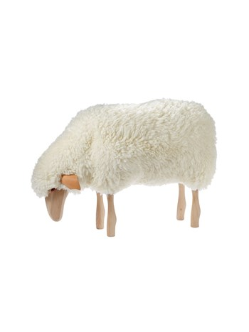small grazing sheep stool