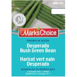 Desperado Green Bean Bush Seeds thumb