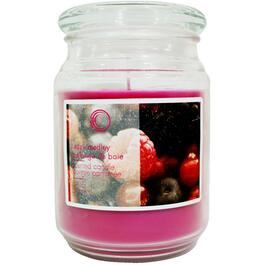 18oz Berry Medley Jar Candle thumb