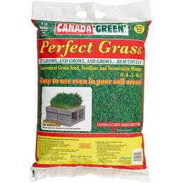 4kg Perfect Grass Grass Seed thumb
