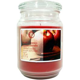 18oz Apple Cinnamon Jar Candle thumb
