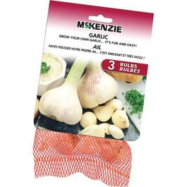 3 Pack Garlic Bulbs thumb