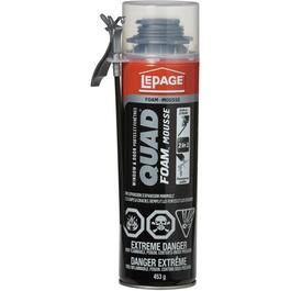 453g Quad Window & Door Foam Sealant thumb