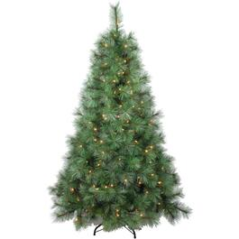 5.5' Scotch Pine Christmas Tree, with 200 Clear Lights thumb