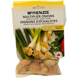 225g Multiplier Onion Bulbs thumb