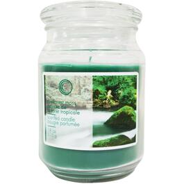 18oz Rainforest Moss Jar Candle thumb