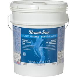 18.2L White Base Velvet Finish Exterior Latex Paint thumb