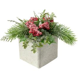"6.5"" Cedar and Berries Potted Plant thumb"