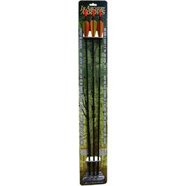 3 Pack Junior Archery Arrows thumb