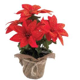 "10"" Potted Red Poinsettia, in Burlap Pot thumb"