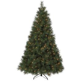 7' Scotch Pine Christmas Tree, with 350 Clear Lights thumb