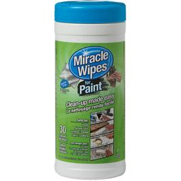 30 Pack Preparation and Clean Up Paint Wipes thumb