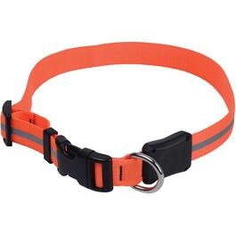 Medium Orange Nite Dawg LED Dog Collar thumb