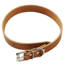 "22"" x 1"" Plain Dog Collar thumb"