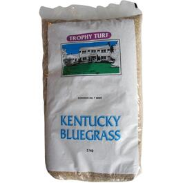 2kg Pure Premium Kentucky Bluegrass Grass Seed thumb
