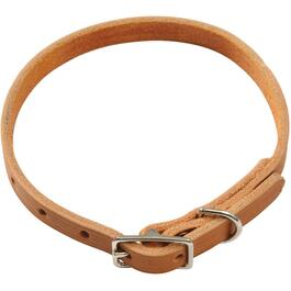 "14"" x 1/2"" Plain Dog Collar thumb"