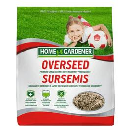 2kg Overseeding Grass Seed thumb