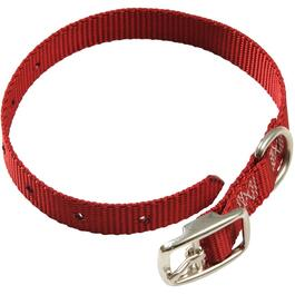 "14"" x 3/4"" Nylon Dog Collar, Assorted Colours thumb"