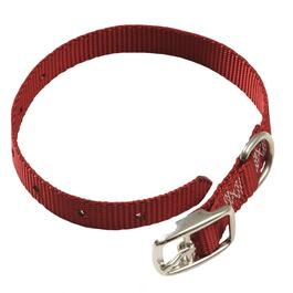 "18"" x 3/4"" Nylon Dog Collar, Assorted Colours thumb"