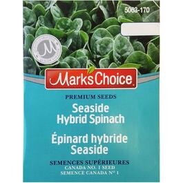 Seaside Hybrid Spinach Seeds thumb