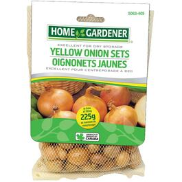 225g Pack Yellow Onion Bulbs thumb