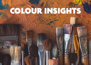 colour insights