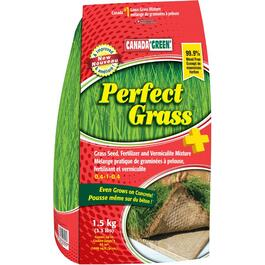 Semence à gazon Perfect Grass, 1,5 kg thumb