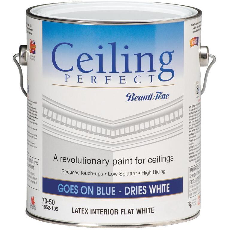 Peinture Dintérieur Au Latex Pour Plafond Mat Parfait 378 L