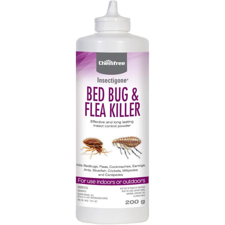 Insecticide En Poudre Pour Punaises De Lit Et Puces Insectigone 200