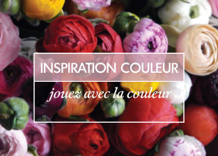 Colour Inspiration french