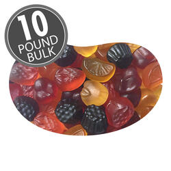 Organic Fruit Flavored Snacks - 10 lbs bulk