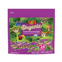 Jelly Belly Organic Fruit Snacks Fun Pack 9.6 oz bag