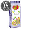Tropical Mix Jelly Beans - 7.5 oz Gift Bags - 12-Count Case