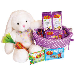 Springtime Sweets & Treats Easter Basket - Purple