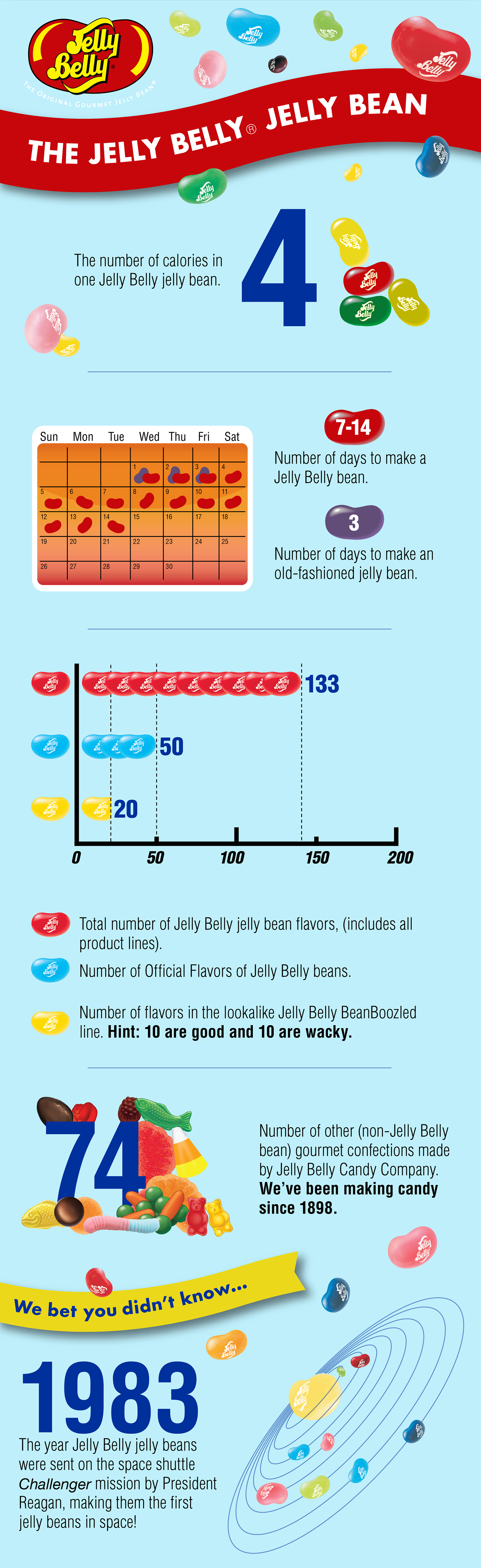 Jelly Belly Bean Basics Infographic